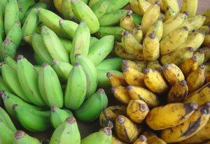 Frutas que se secan